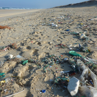 Blue Planet Live warns about the danger of plastic feature